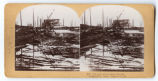 The path of the great Tornado, at Galveston Texas, September 1900.
