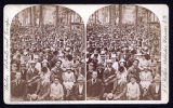 Stereoscopic card; Audience in Grove