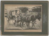 [Couple in wagon pulled by mules with hay bales, Taylor, Texas]