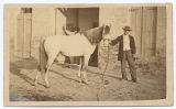 [Man and Horse, Matamoros, Mexico]