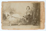 [Young boy seated in goat-drawn cart]