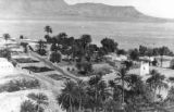 Date growing and processing facility, near Biskra, Algeria, Fall 1943