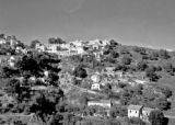 El Biar section, Algiers, November 1943