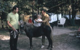 Our son, Ronn, and Sergio with Chris and Cinnamon, Daingerfield, Tex., 1970