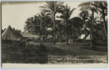 Camp of U.S. Troops, Veracruz, Mex. Part of 4th U.S. Inf. Camp