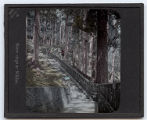 Lantern slide 'Stone steps at Nikko'