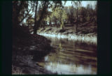 [Trinity River, slide no. 11]