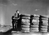 [Men on Loading Dock, Bales of Cotton, Texas & Pacific Railway Company]