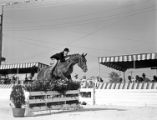 [Contestant, Brush Jump, Hunter Jumper Event, Pin Oak Charity Horse Show]
