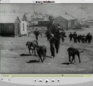 Tracked By Bloodhounds, or A Lynching in Cripple Creek