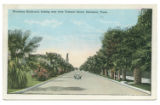 Broadway Boulevard, looking west from Tremont Street, Galveston, Texas.