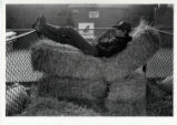 [Young man resting on hay, State Fair of Texas]
