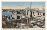 Shipping Cotton off Municipal Wharf, Corpus Christi, Texas.