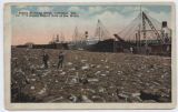 Cotton Shipping Scene, Galveston, Tex., the first Cotton Export Port of the World
