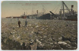 Cotton in Open - 2900 Bales Awaiting Shipment, Galveston, Texas