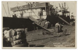 Loading Cotton, Galveston Wharf