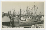 Fishing Boats - Palacios, Texas