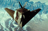 [F-117 stealth fighter]
