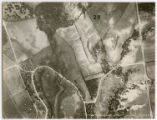 [Grid 28: White Rock Lake Aerial Survey, Unlabeled]